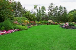 Lawn Care Fort Worth TX