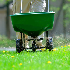 Fertilization & Weed Control North Richland Hills TX